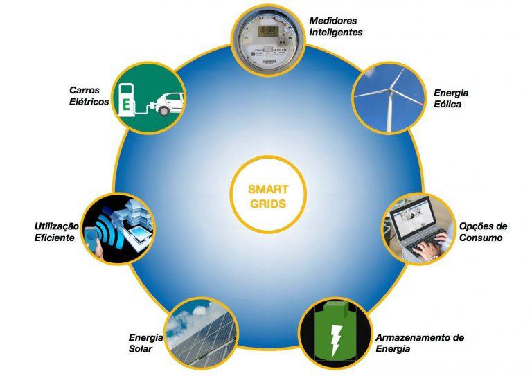 eesc smart grids 1