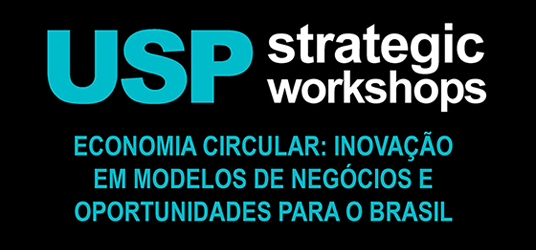 strategic workshop economia circular