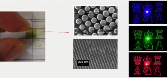 eesc foto nano sel
