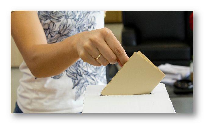 eesc voto site